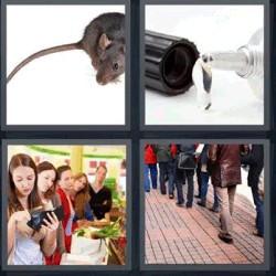 4 fotos 1 palabra ratón pegamento