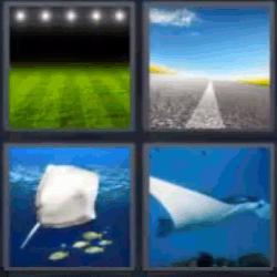 4 fotos 1 palabra campo de fútbol carretera