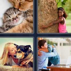 4 fotos 1 palabra gatitos perro