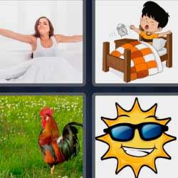 4 fotos 1 palabra gallo sol con gafas