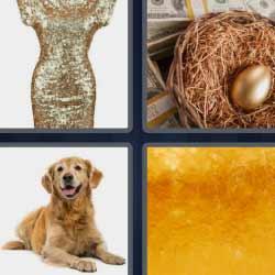 4 fotos 1 palabra vestido nido perro