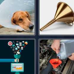 4 fotos 1 palabra perro con protección gasolina