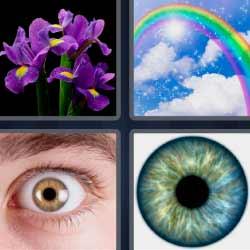 4 fotos 1 palabra ojo flores