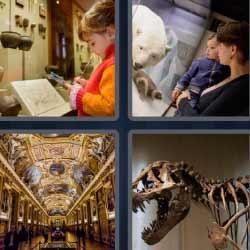 4 fotos 1 palabra huesos dinosaurio