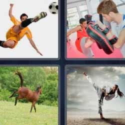 4 fotos 1 palabra boxeo caballo futbolista