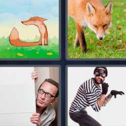 4 fotos 1 palabra zorro ladrón