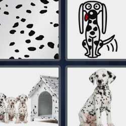 4 fotos 1 palabra perros blancos con puntos negros