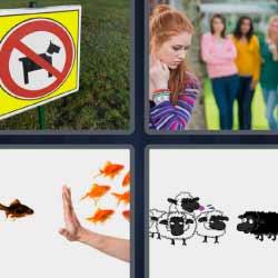 4 fotos 1 palabra ovejas perros