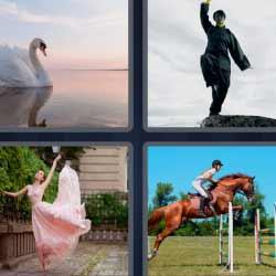 4 fotos 1 palabra cisne bailarina caballo