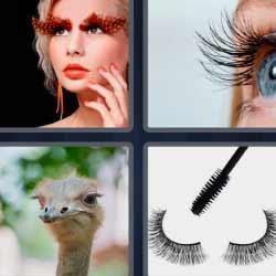4fotos 1palabra avestruz ojo rimel
