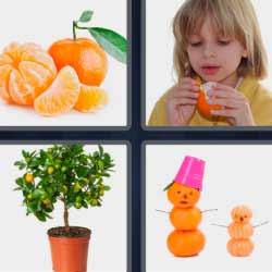 Cuatro fotos una palabra naranjas fruta maceta niña