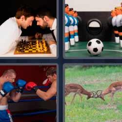 4 fotos 1 palabra boxeadores ajedrez ciervos fútbol