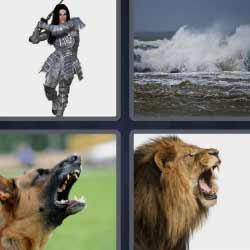 4 fotos 1 palabra león perro mar