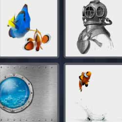 4 fotos 1 palabra peces buzo