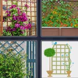 4 fotos 1 palabra jardinera
